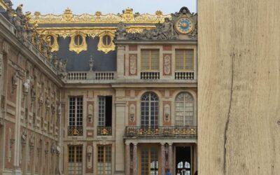 Roble Versalles